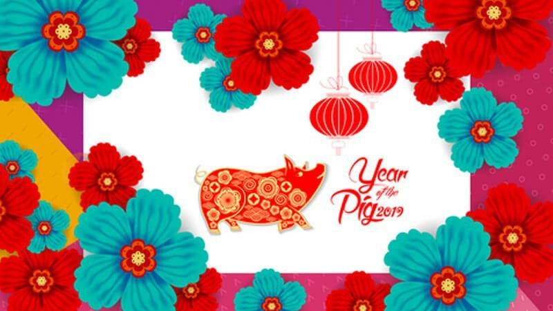 Year of the Pig Event